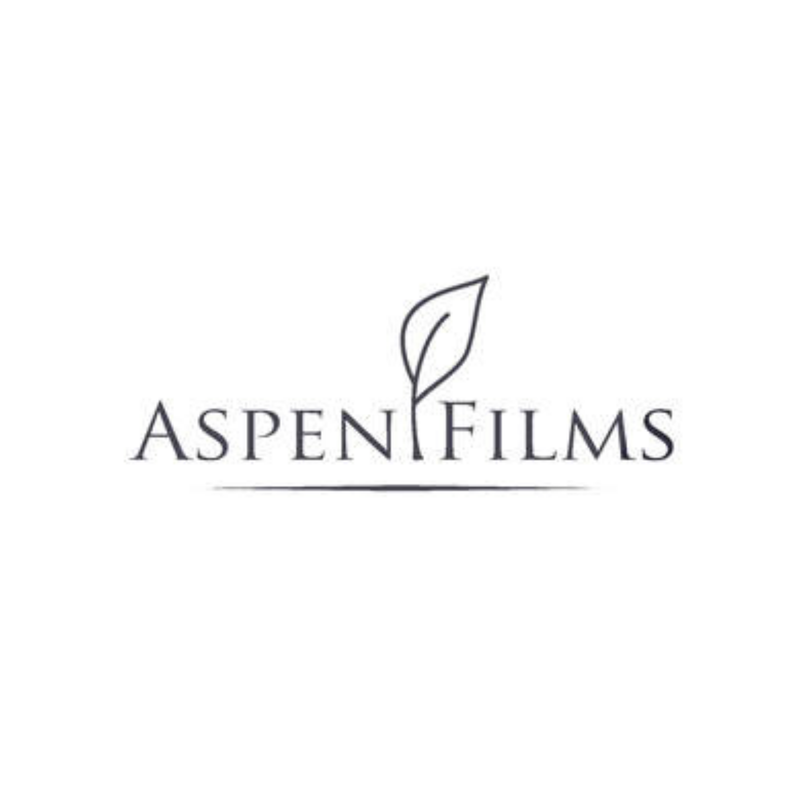Aspen Films, small local business, film programming, film creating, downtown prince albert
